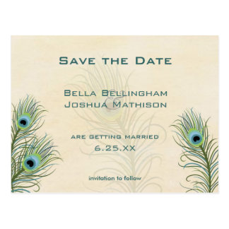 Peacock Feathers Save the Date Wedding pos Postcard
