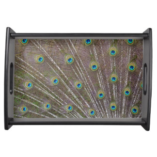 Peacock Feathers Serving Tray