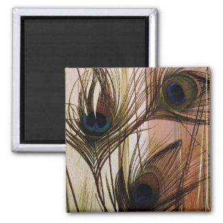 Peacock Feathers Square Magnet