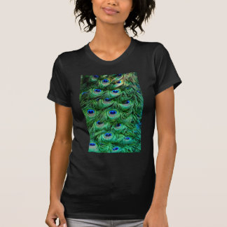 Peacock Feathers T-Shirt