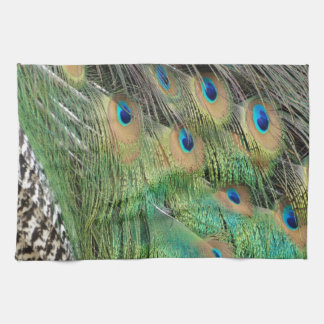 Peacock Feathers Tan Green And blue Colors Tea Towel