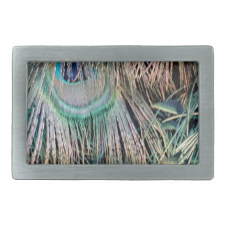 Peacock Feathers Tan Green And blue Rectangular Belt Buckles