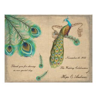 Peacock Feathers Wedding Program Burnt Edges 21.5 Cm X 28 Cm Flyer