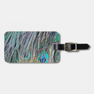 Peacock Feathers Wild Colors Luggage Tag