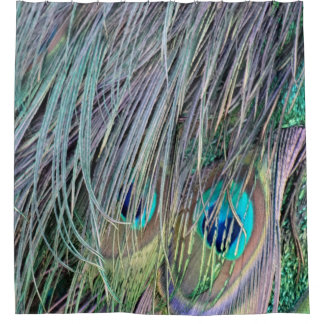 Peacock Feathers Wild Colors Shower Curtain