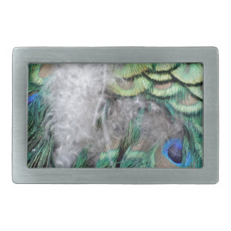 Peacock Feathers With Blue Eyes Belt Buckle
