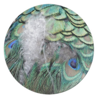 Peacock Feathers With Blue Eyes Plate