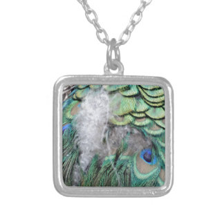 Peacock Feathers With Blue Eyes Silver Plated Necklace