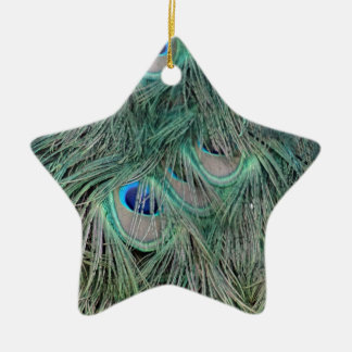 Peacock Feathers With Pick Boo Eyes Christmas Ornament