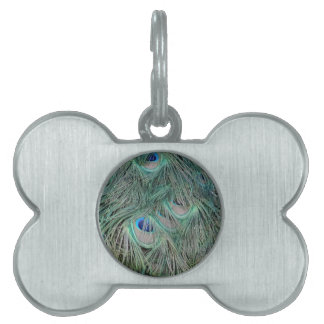 Peacock Feathers With Pick Boo Eyes Pet ID Tag