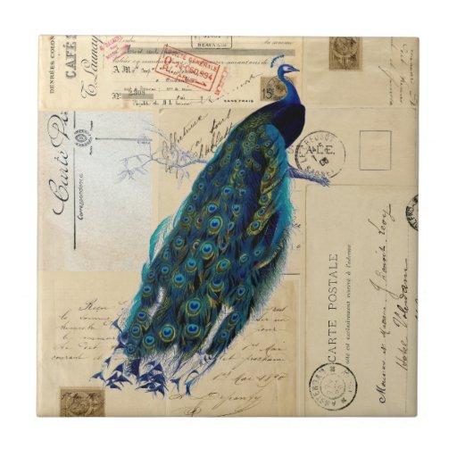 Peacock French Postcards Tile or Trivet
