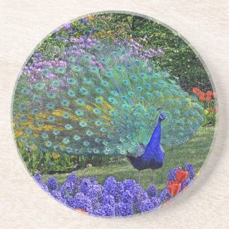Peacock in Fowers #2 Coaster