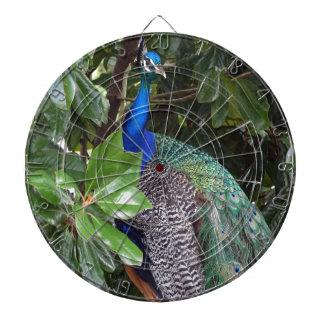 Peacock In Magnolias Dartboard