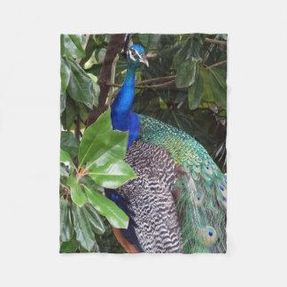 Peacock in Magnolias Fleece Blanket