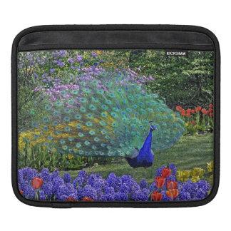 Peacock in Spring Flowers iPad Sleeve