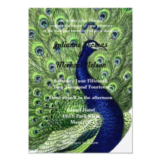 "Peacock 5"" X 7"" Invitation Card"