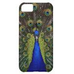 Peacock iPhone 5 Case Girls Pretty Elegant Case
