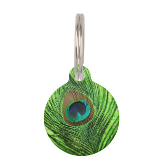 Peacock Lime Green Pet Tag