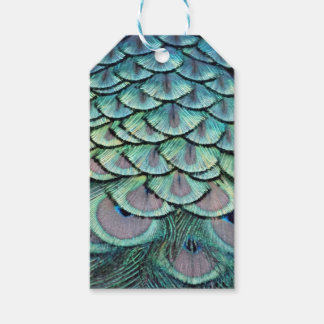 Peacock Lovely Green Gift Tags