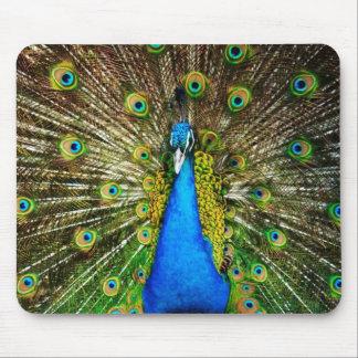 Peacock Mousepad