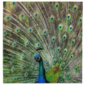 Peacock Napkin