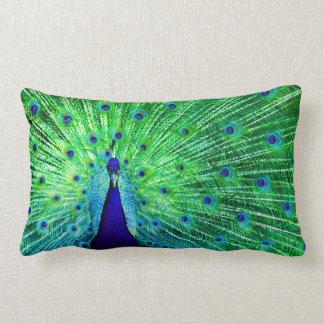 Peacock Neon Lumbar Cushion