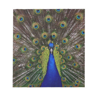 Peacock Notepad