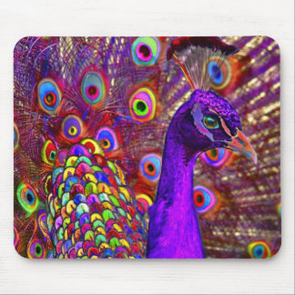 Peacock of a million colors mouse mat