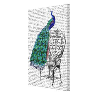 Peacock on Chair Canvas Print