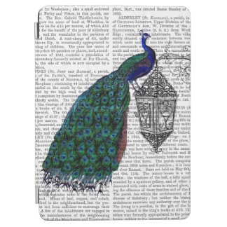 Peacock On Lamp iPad Air Cover