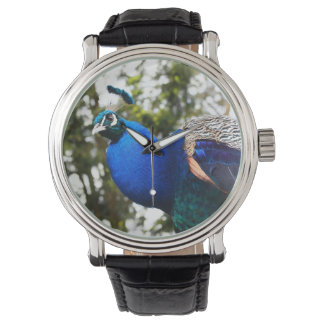 Peacock or upload your photo, vintage watch