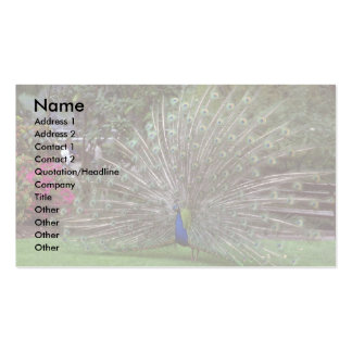 Peacock Pack Of Standard Business Cards