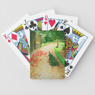 Peacock path near a castle in northern Portugal. Deck Of Cards