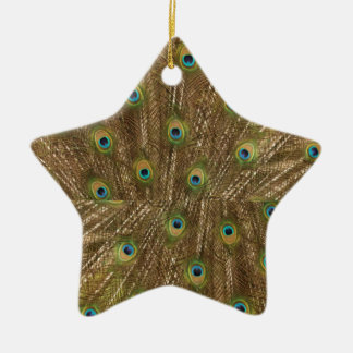 Peacock Pattern Star Ornament