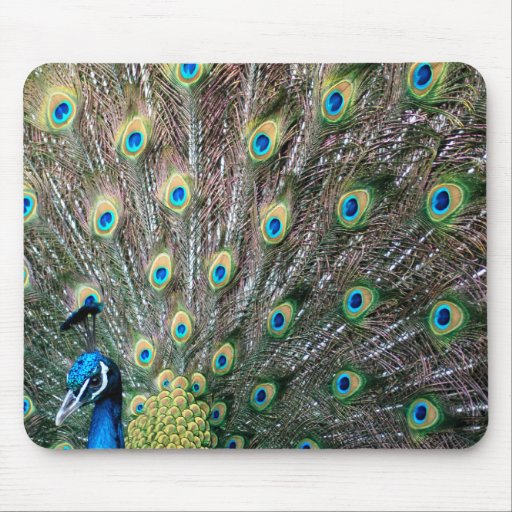 Peacock Peafowl Mouse Pads