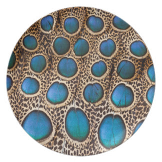 Peacock-pheasant feather design plate