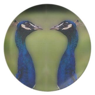 Peacock Photo Melamine Plate