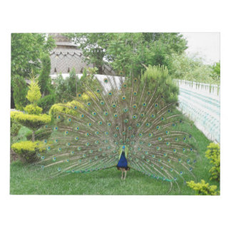Peacock Photography Notepad