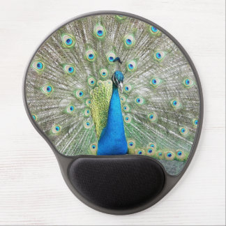 Peacock Plumage Photo Gel Mouse Pad
