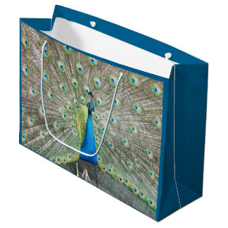 Peacock Plumage Photo Large Gift Bag