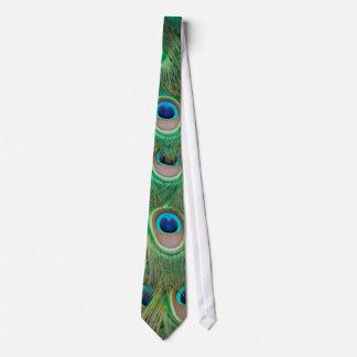 Peacock plumage tie