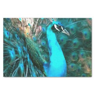 Peacock Plumage Tissue Paper