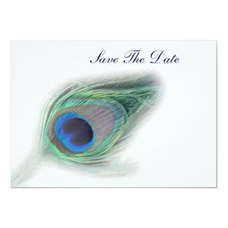 Peacock Plumes save the date Card