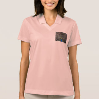 peacock polo t-shirts