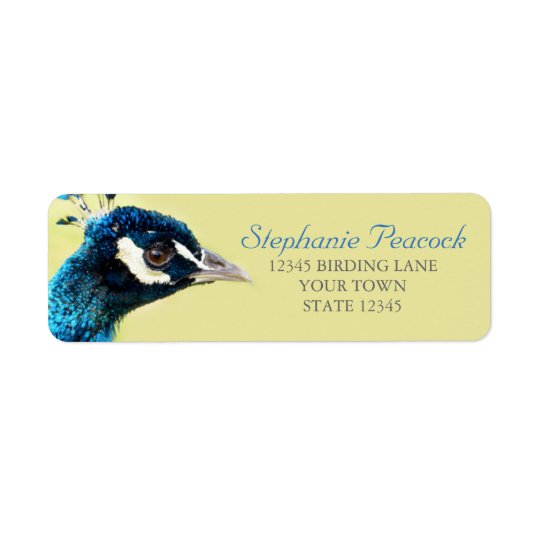 Peacock Portrait Photograph Return Address Labels