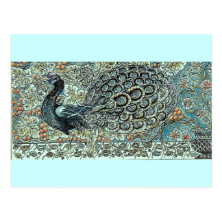Peacock Post Cards