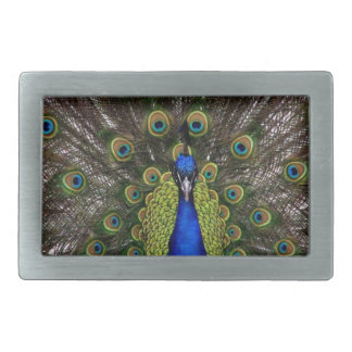 Peacock Rectangular Belt Buckle