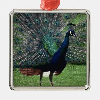 Peacock Silver-Colored Square Decoration