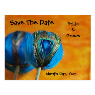 Peacock Spheres with Orange Save the Date Postcard