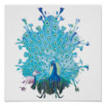 Peacock spirit